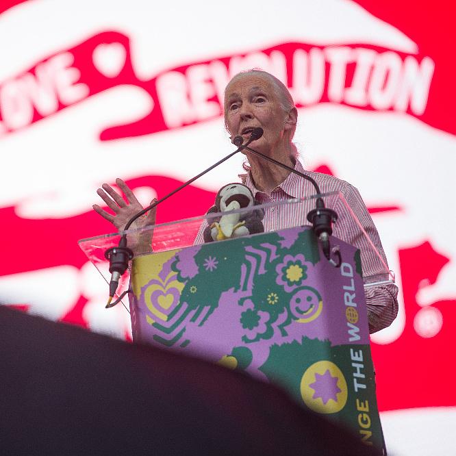 Jane Goodall szerint még nem késő változtatni – Videó